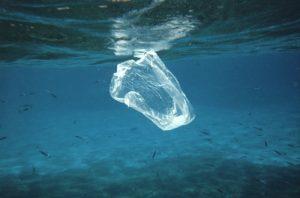Floating Plastic Debris